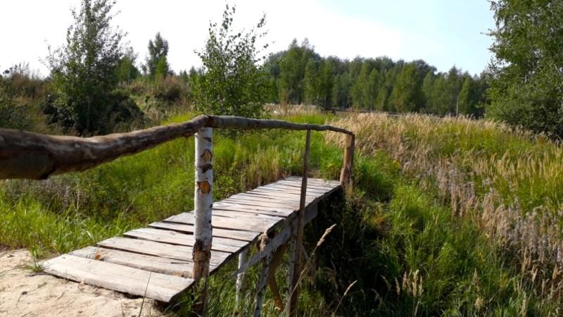 Археологическая экспедиция в Хотылёво