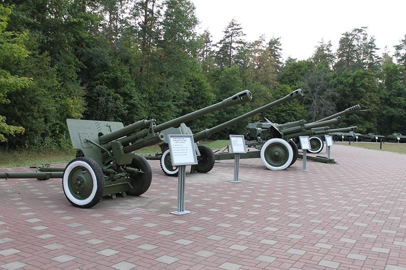 Пушки Партизанская поляна