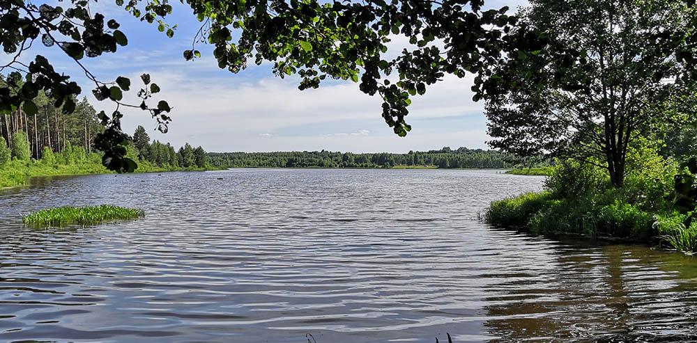 Орловское полесье - пруд Радовище