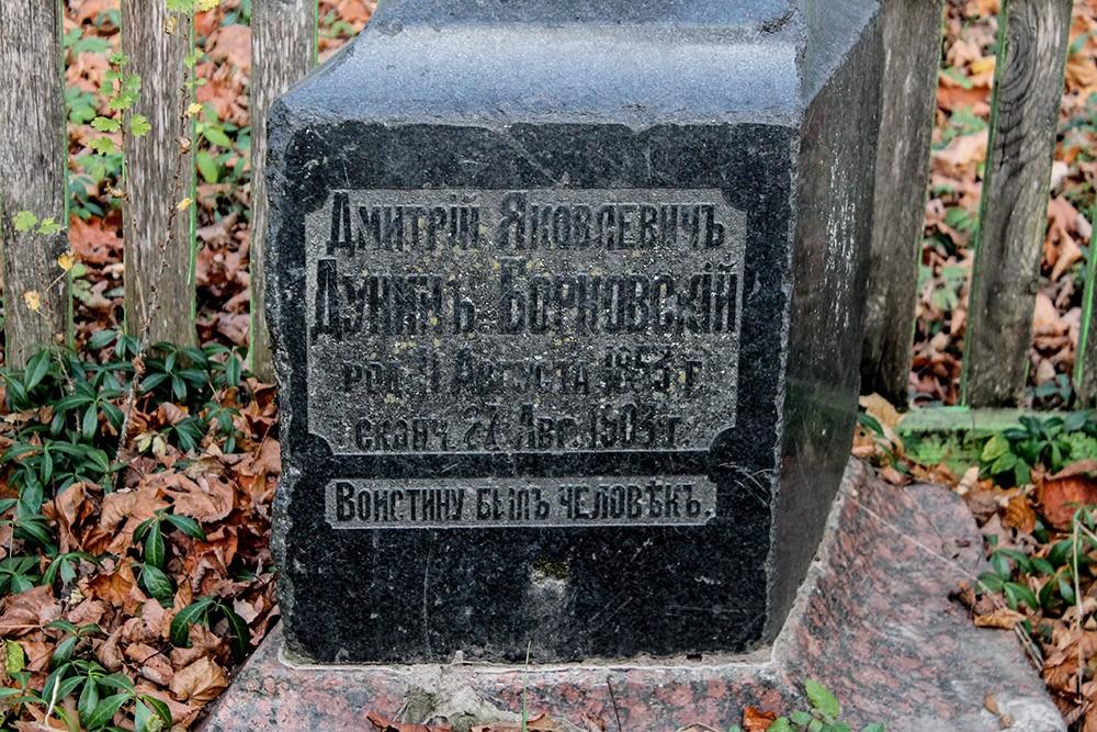 садьба Дунин-Борковских в Новой Романовке