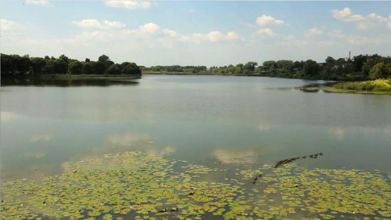 Река Бабинец в Стародубе
