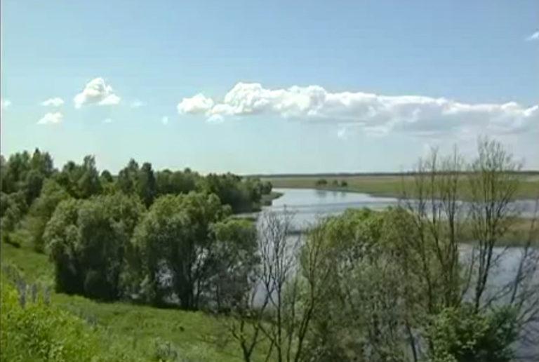 Река Судынка
