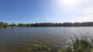 Дубровка озеро